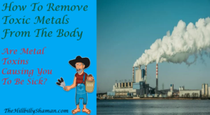 How To Remove Toxic Metals From The Body - Featured Image